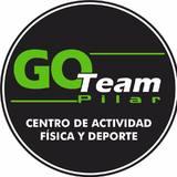 Go Team Pilar - logo