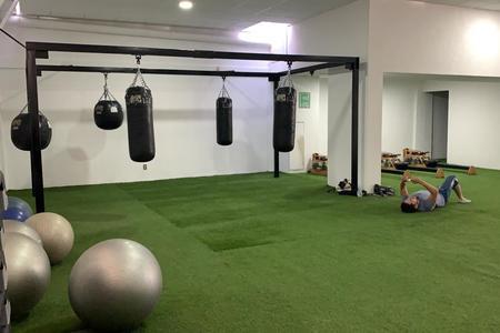 Zona Fitness COAPA -
