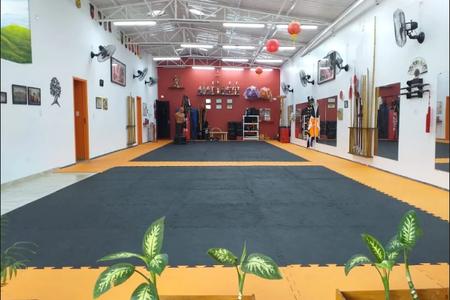 Escola de Kung Fu Leão Chines -
