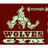 Wolves Power Fitness - logo