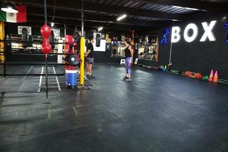 Wolf Boxing Club Playa del Carmen