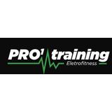 Pro1 Training - logo