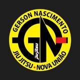 Ct G.n Team - logo