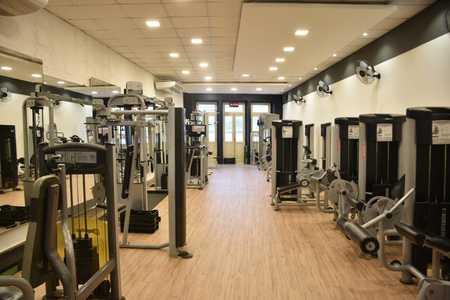Wellness Academia