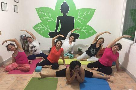 Krishna Yoga -