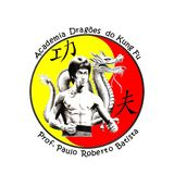 Academia Dragões Do Kung Fu - logo