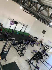 Studio Alpha -