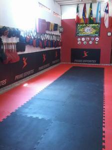 Associação de Kung Fu Shaolin do Sul -