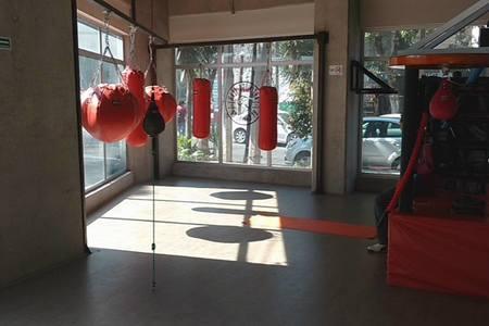 Boxing Co. -