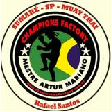 Champions Factory - logo