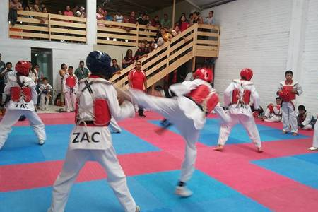 JI DO KWAN Zacatecas -