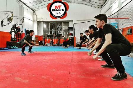WT Kung Fu Mercedes -