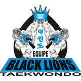Academia Black Lions Taekwondo - logo