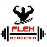 Flex Academia Parque Das Bandeiras - logo