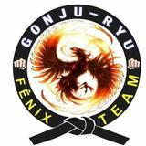 Escola Gonjuryu Brumadinho - logo