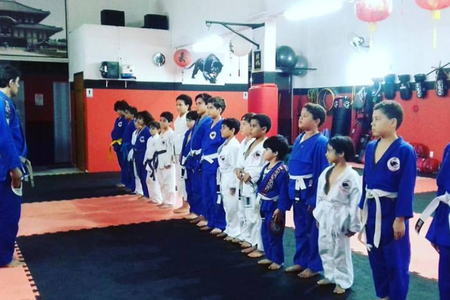 Instituto Panthers de Artes Marciais
