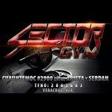 Sector Gym - logo