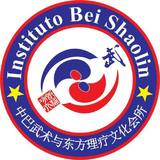 Instituto Bei Shaolin - logo