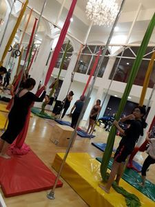 Pole and Art Dance Fitness and Entertainment