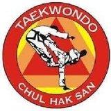 Tae Kwon Do Florida (Vte Lopez) - logo