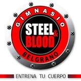 Steel & Blood - logo