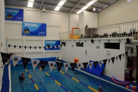 Escuela de natación Pingüis