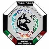 Iktan Zazil Ctc Pinturas Zumpango - logo