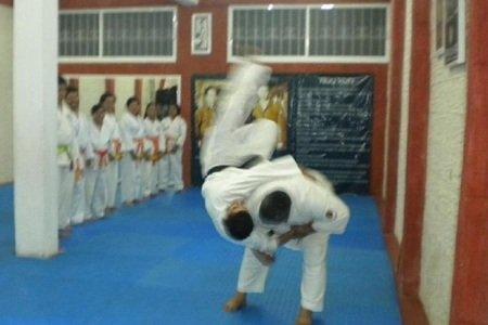 Asociación Olivares Shopokan KarateDo Mexico-JKA