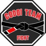 Godoi Team Fight - logo